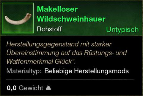 Makelloser Wildschweinhauer