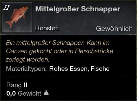 Mittelgroßer Schnapper